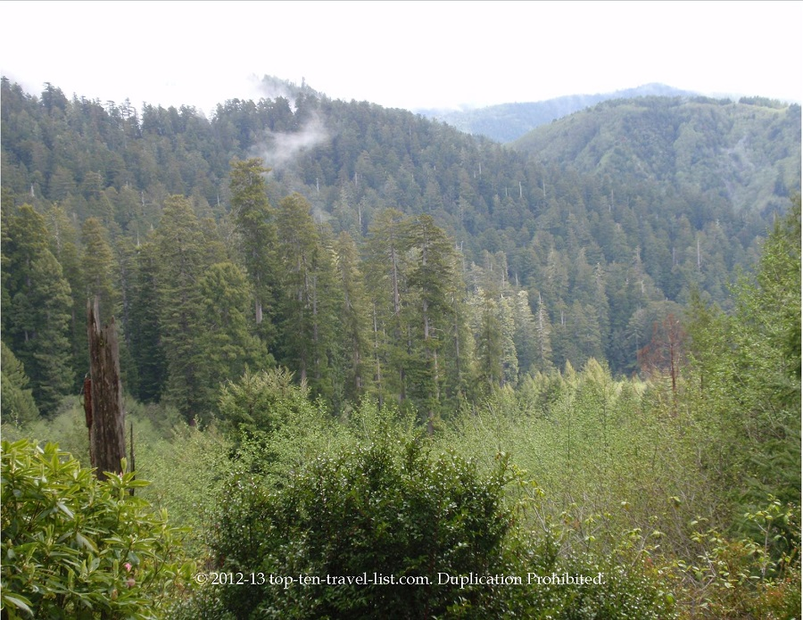 Views from the overlook at the Trees of Mystery in Klamath, CA