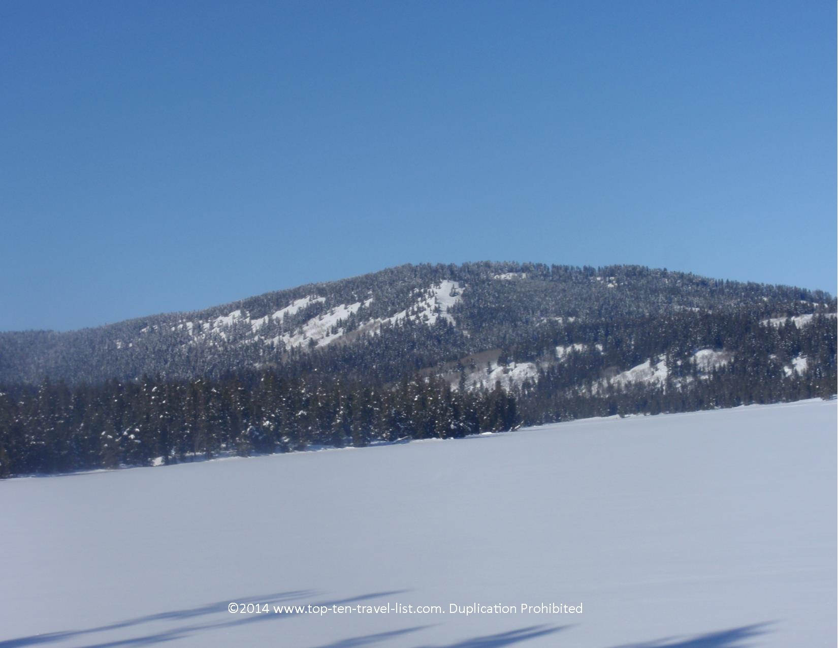 Winter scenery at Harriman State Park in Southern Idaho