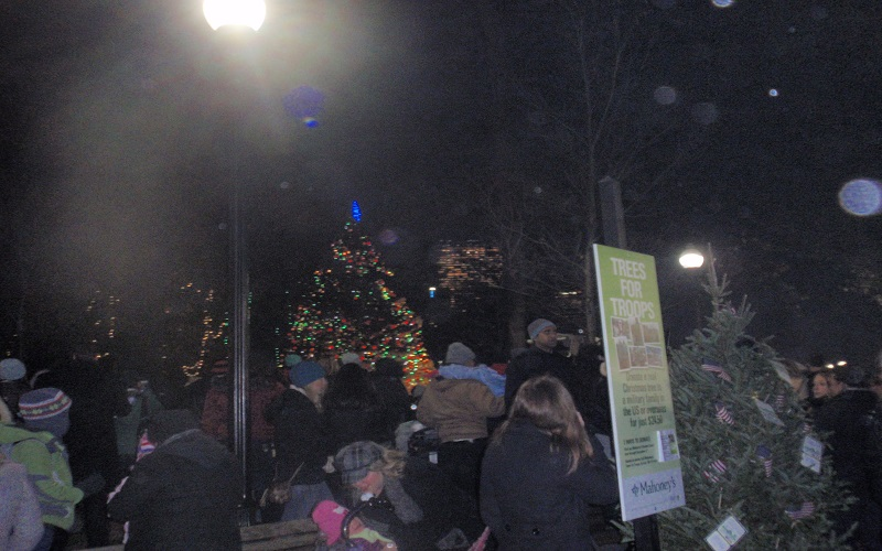 Tree lighting at Boston Common