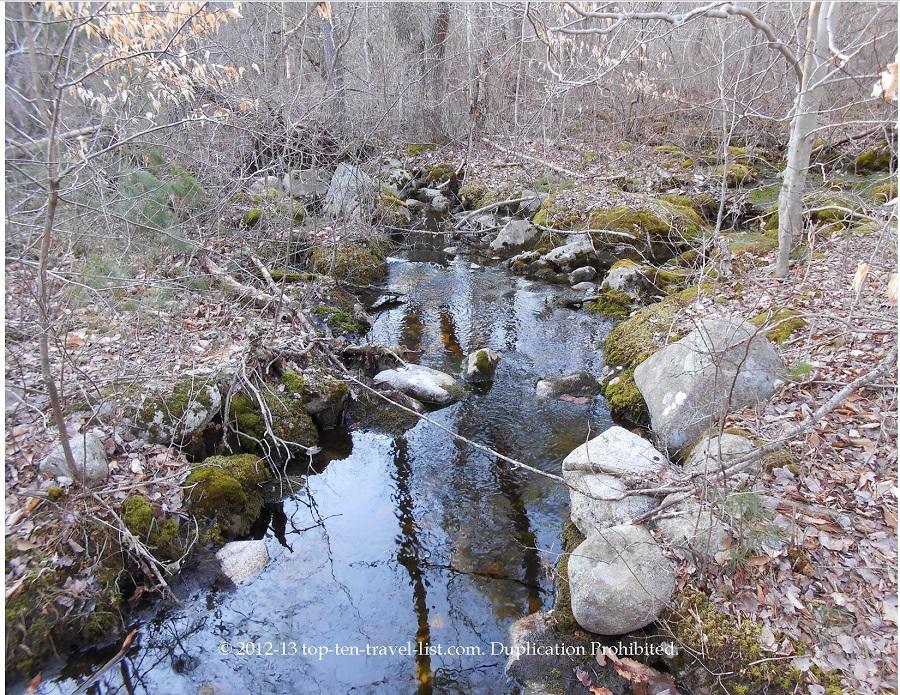 Copicut Woods Fall River - stream