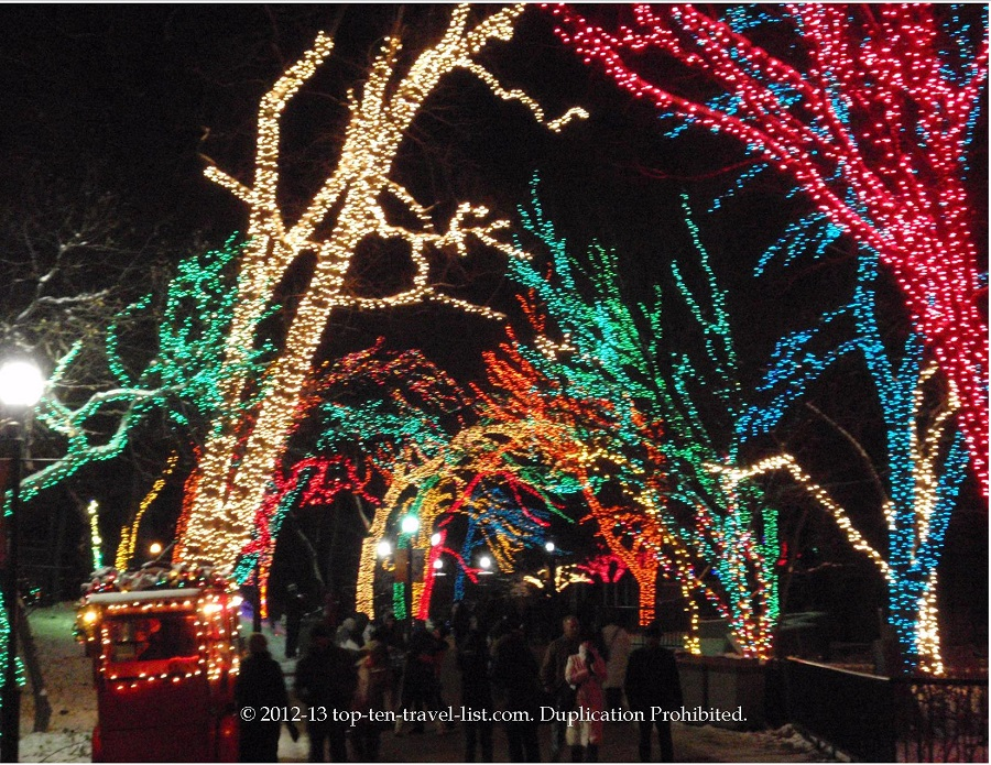 Lincoln Park Zoo lights