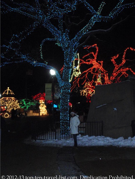 Cool blue lighted tree at Lincoln Park ZooLights