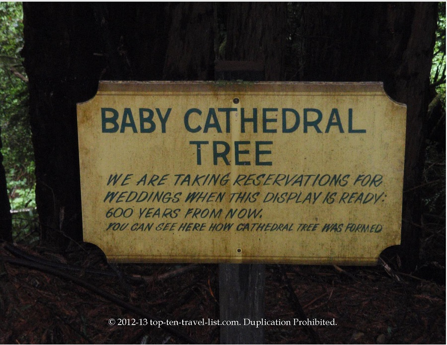 Funny sign at Trees of Mystery