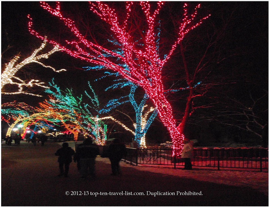 Cool pink lighted tree at Lincoln Park ZooLights