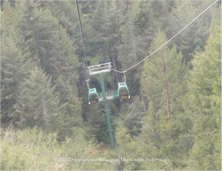 Gondola ride at Trees of Mystery