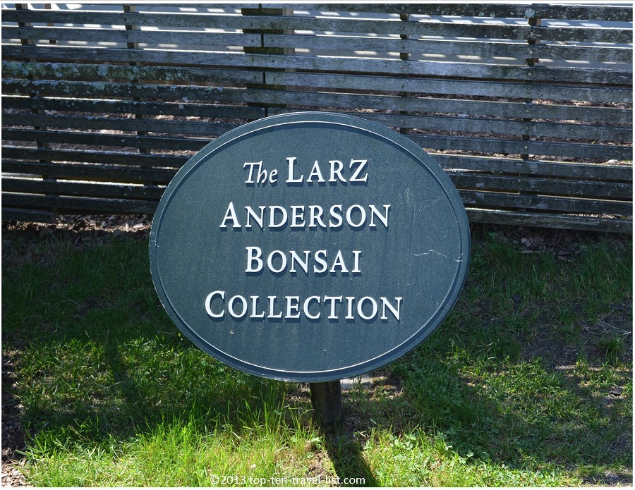 The Larz Anderson Bonsai Collection - The Arnold Arboretum - Jamaica Plains, MA