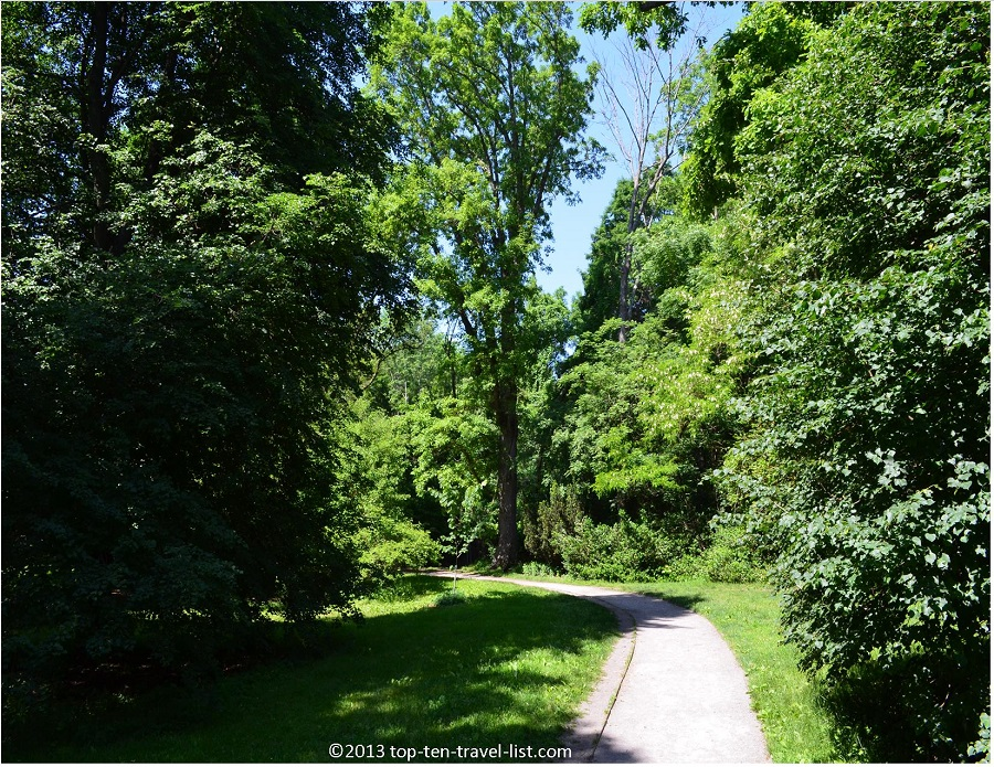 The Arnold Arboretum path views - Jamaica Plains, MA