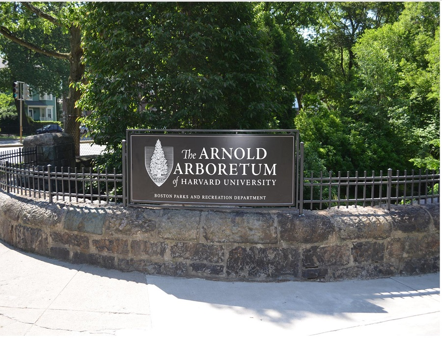 The Arnold Arboretum sign