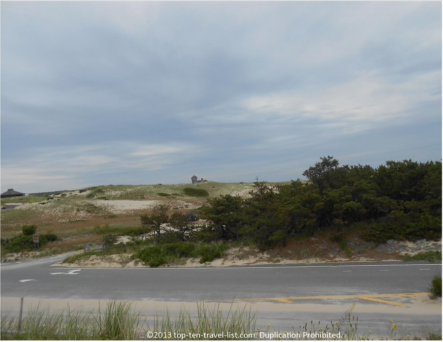 Scenery on  Province Lands Bike Path in Provincetown, MA