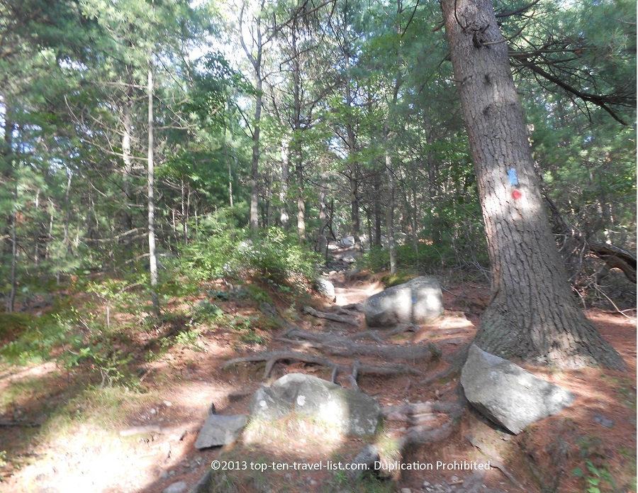 Hike at Blue Hills Reservation - Milton, MA