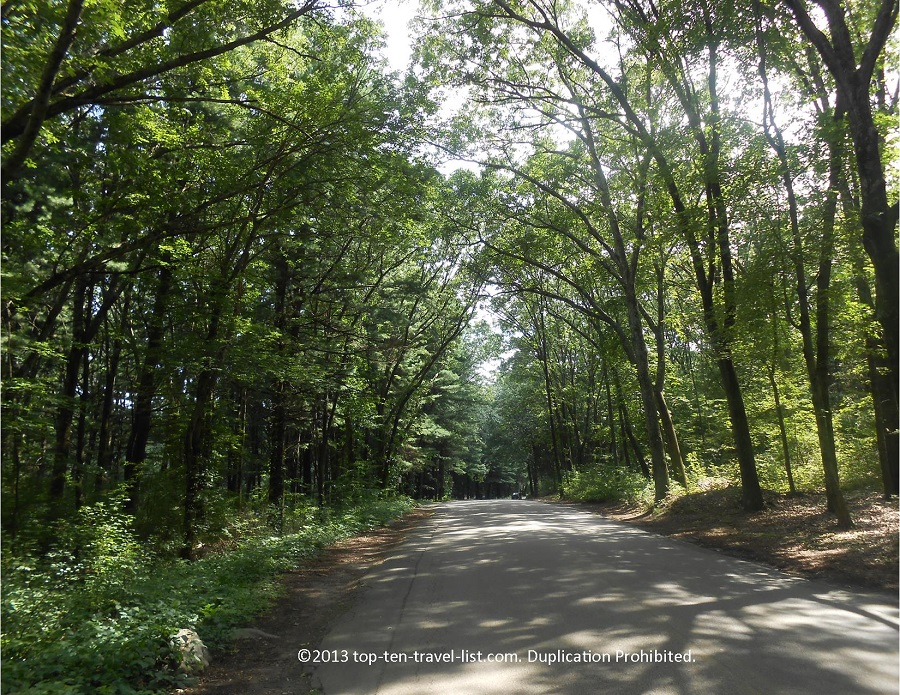 Tunnel of trees at Lincoln Woods State Park in Lincoln, Rhode Island