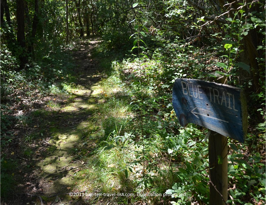 Blue trail at Emilie Ruecker Wildlife Refuge