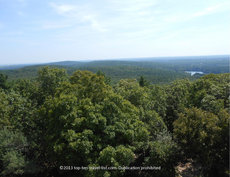 Forest views from Blue Hills Observatory in Massachsuetts