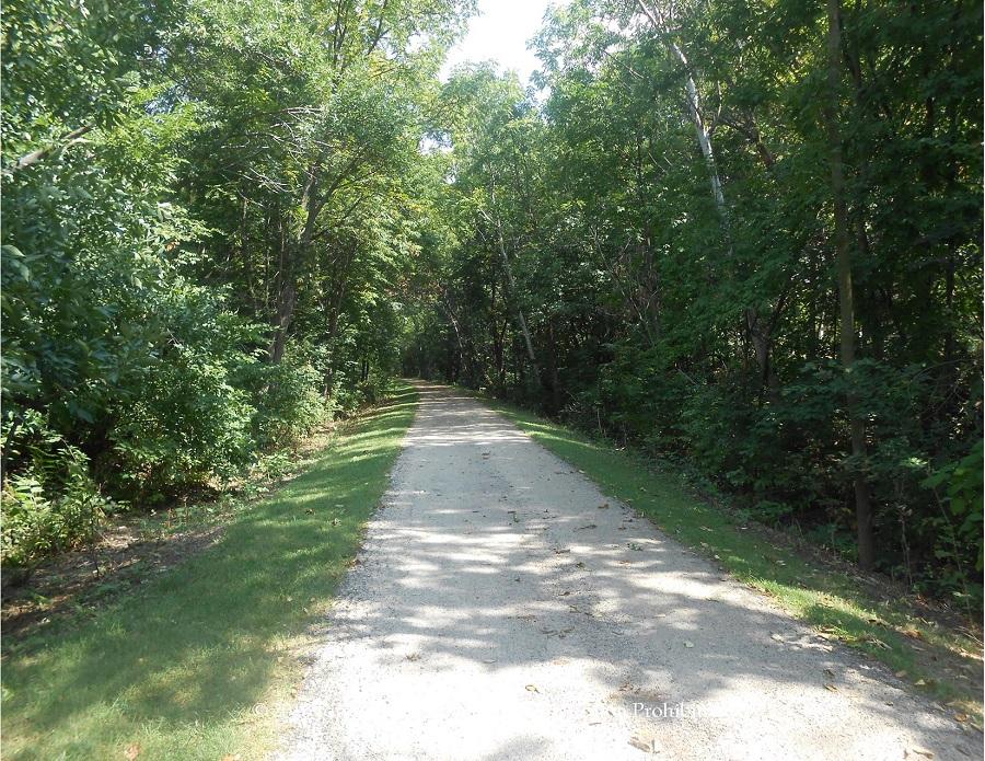 Lowell Park bikeway in Dixon, IL