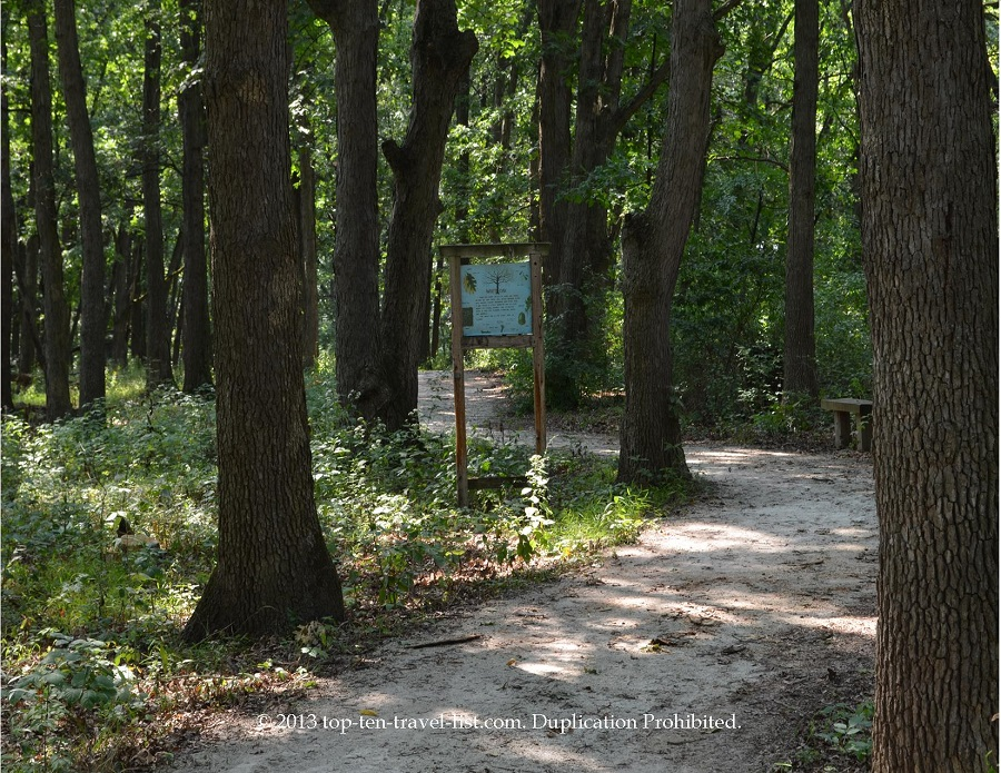 Path views at Little Red School House in Palos Heights, IL
