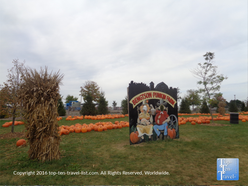 great-fall-photo-at-bengstons-pumpkin-farm-in-homer-glen-il