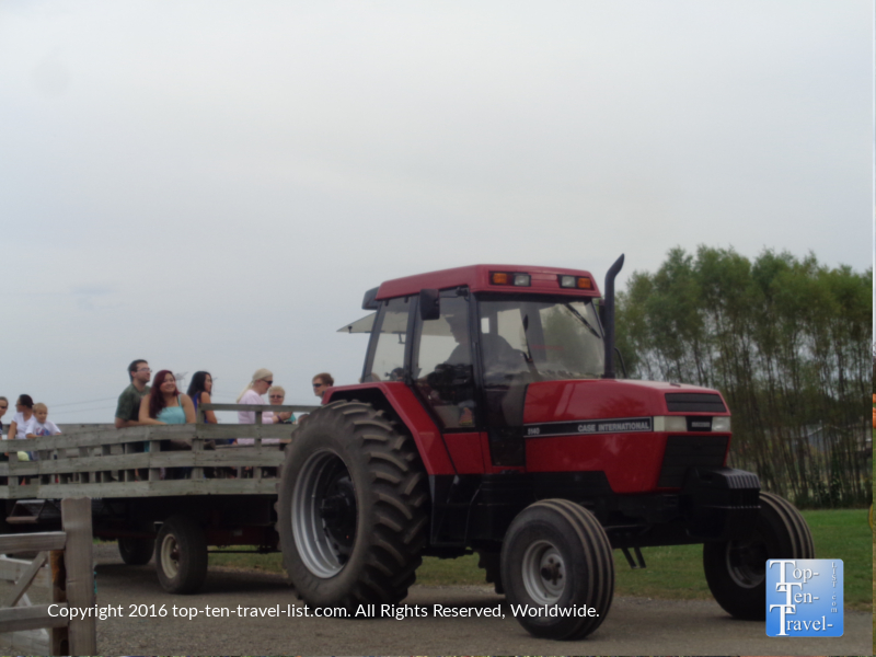 tractor-pulled-hayride-at-bengstons-pumpkin-farm-in-homer-glen-il