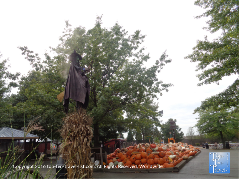 witch-and-pumpkins-at-bengstons-pumpkin-farm-in-homer-glen-il