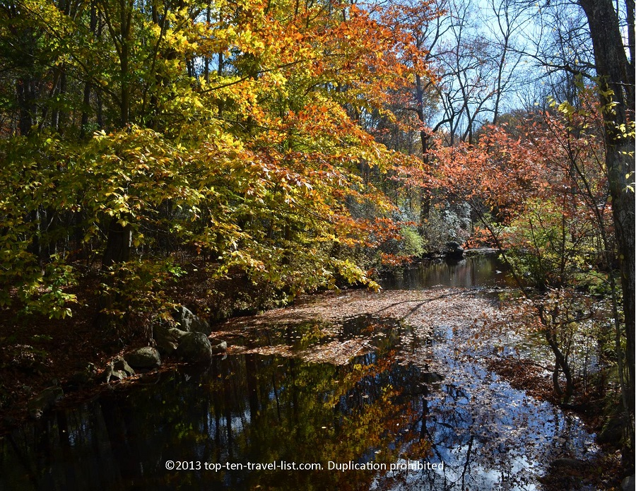 Fall foliage reflections at Devil's Hopyard in CT