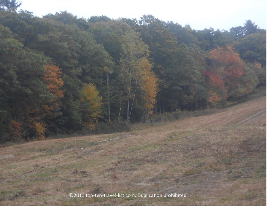 The start of fall foliage at Blue Hills Reservation in Massachusetts