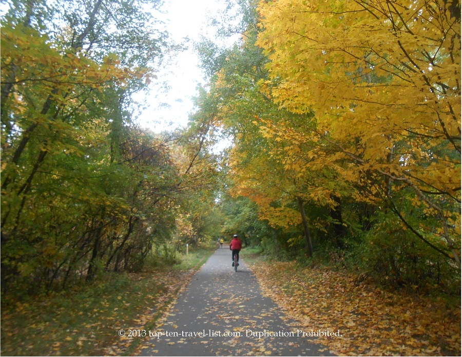 Gorgeous yellow foliage at the start of the Minuteman Bikeway in Massachusetts