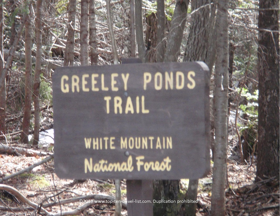 White Mountain National Forest - Greeley Ponds Trail