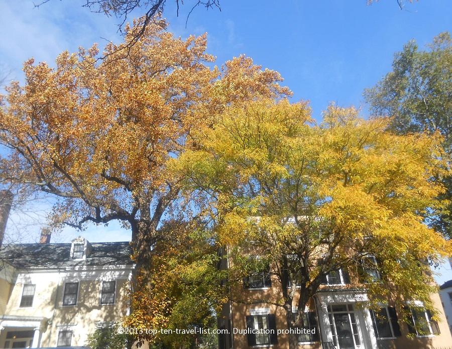 Beautiful fall foliage in Salem, Massachusetts