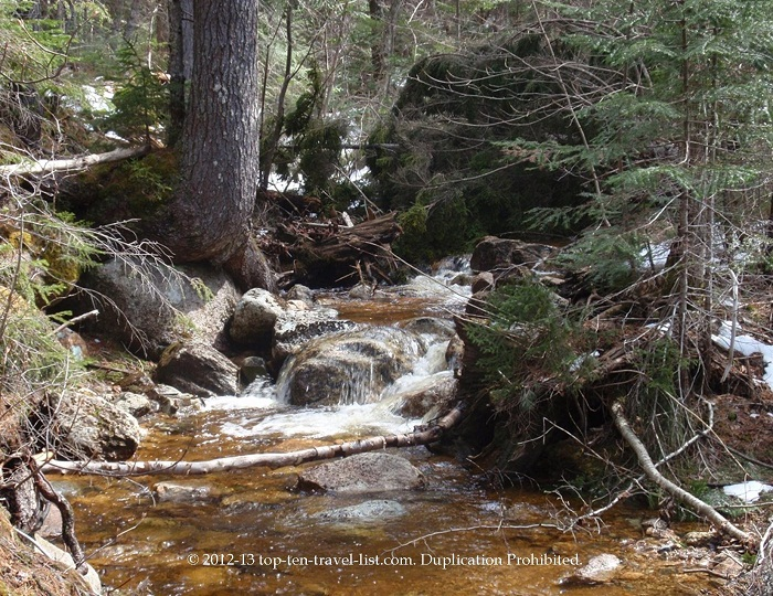 Scenic stream in the White Mountains National Forest