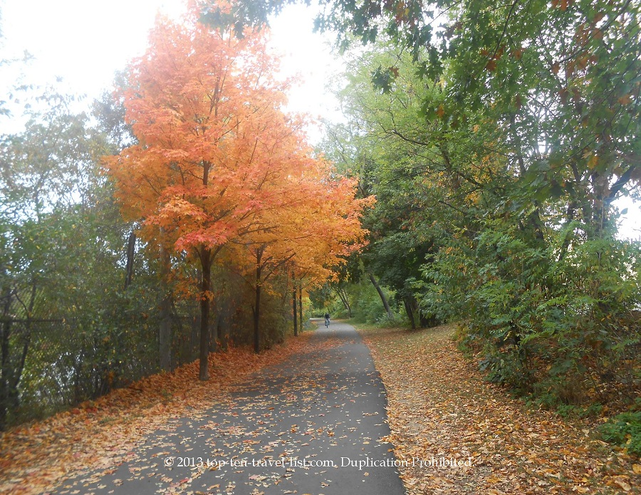 A row of brightly colored trees along the Massachusetts Minuteman Path