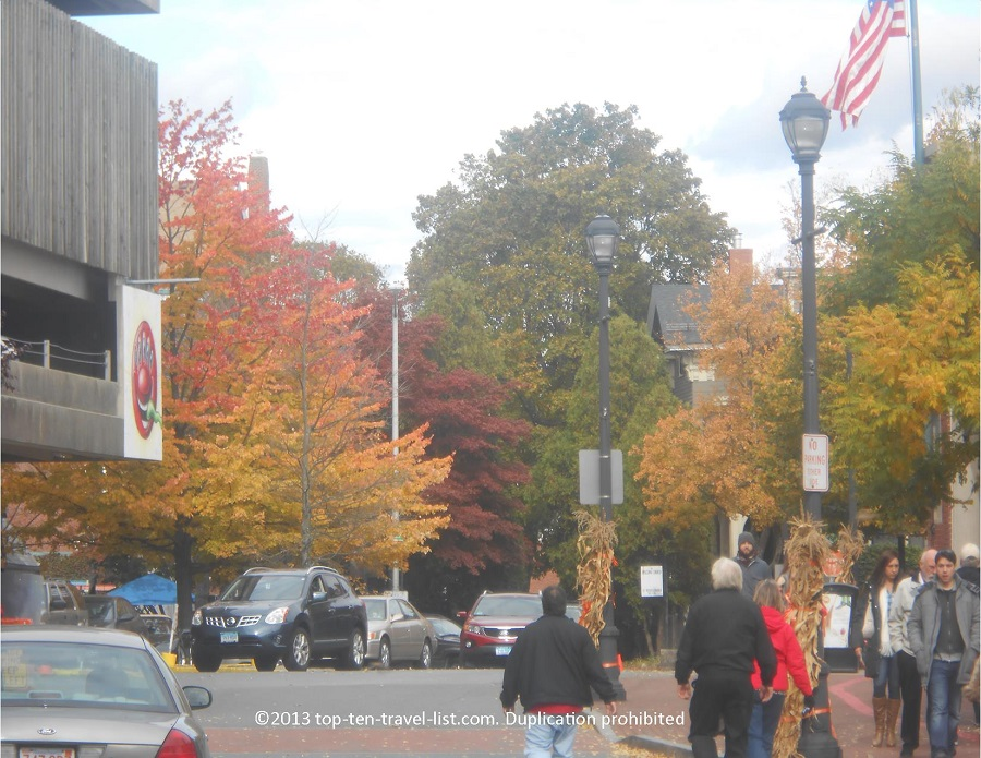 Medly of fall colors in Salem, Massachusetts