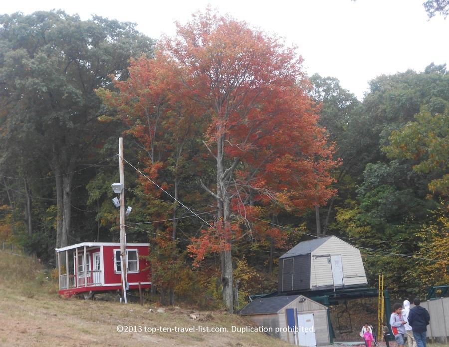 pretty orange red tree near blue hills ski hill blog