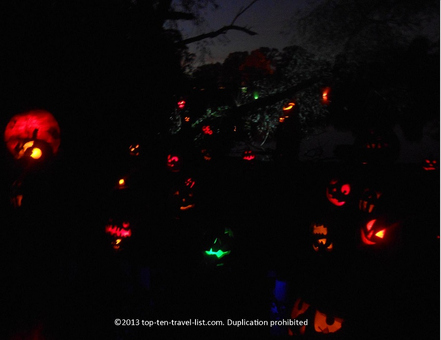 Jack O'lanterns at Roger Williams Park Zoo