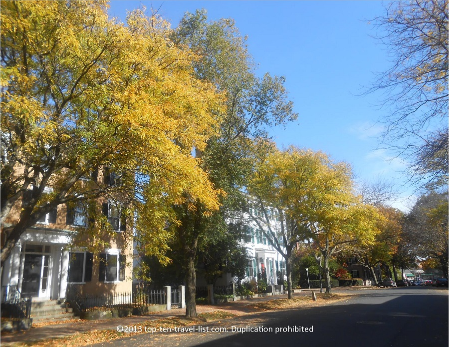 Pretty yellow foliage lining the streets of Salem, Massachusetts