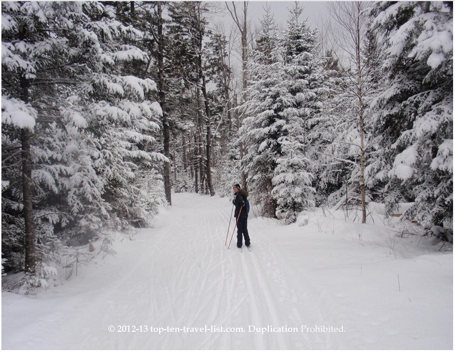 Cross country skiing on a snowy day in Bretton Woods, New Hampshire