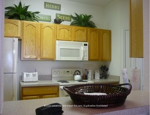 Windsor Hills Condo rental - Orlando FL - kitchen view