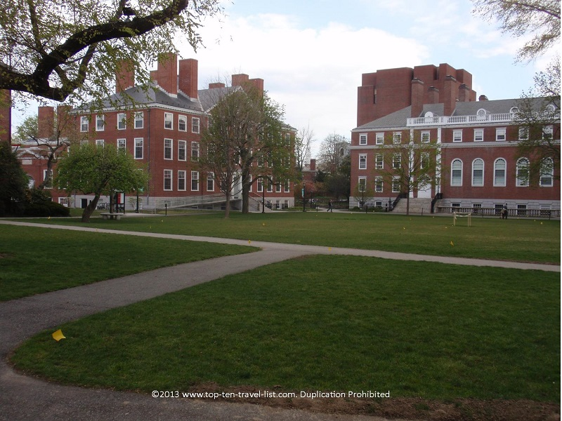 Harvard Yard at Harvard University - Cambridge, MA