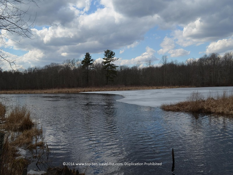 Scenic river views - Boyden Wildlife Refuge - Taunton, MA