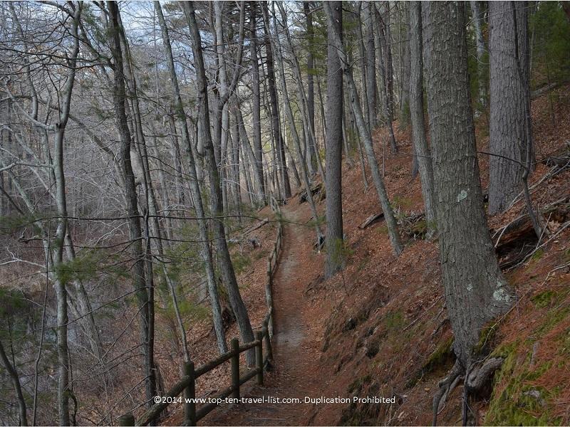 Trail view at Gertrude M. Boyden Wildlife Refuge in Taunton, MA