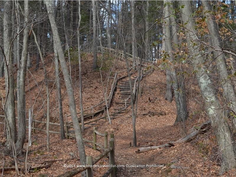 Trail views at Gertrude M. Boyden Wildlife Refuge in Taunton, MA