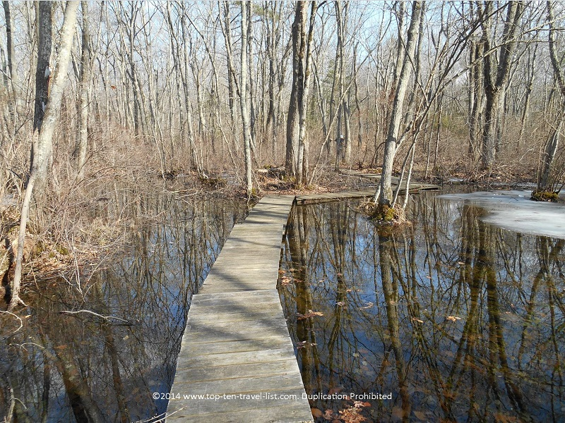 Wooden water walkway at Caratunk Wildlife Refuge - Seekonk, MA