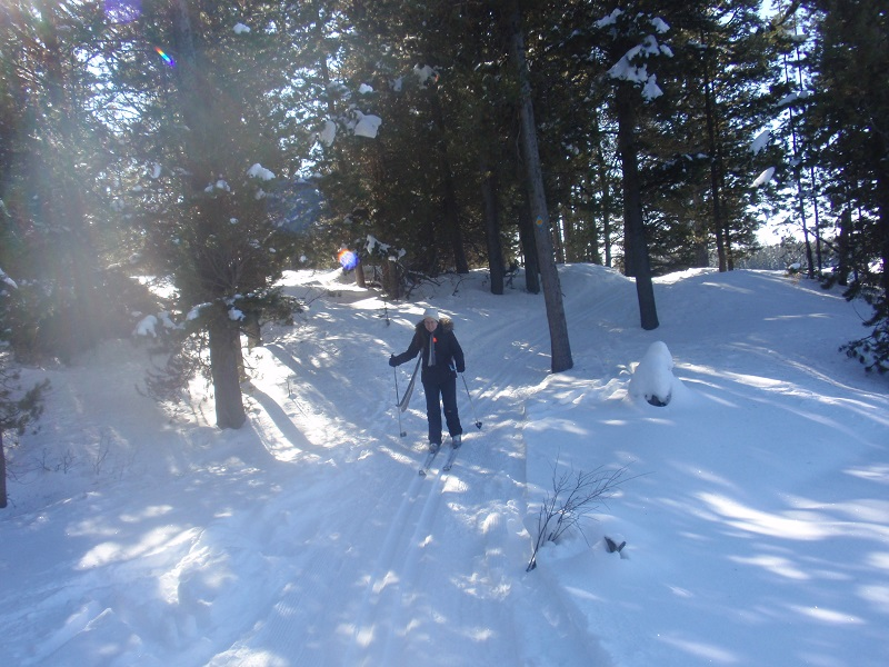 Cross country skiing at Harriman State Park - Island Park, Idaho