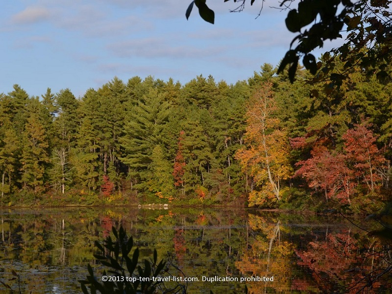 Fall foliage reflection at Myles Standish State Forest - Carver, Massachusetts