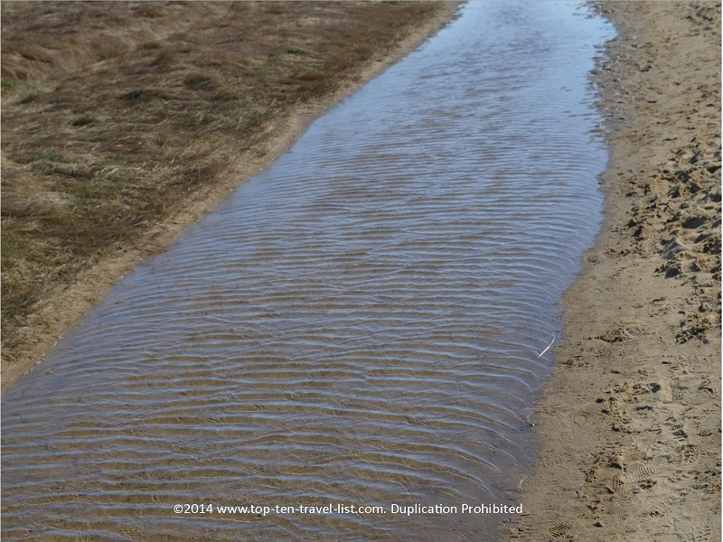 Ripples in the water - Cape Cod's Great Island Trail