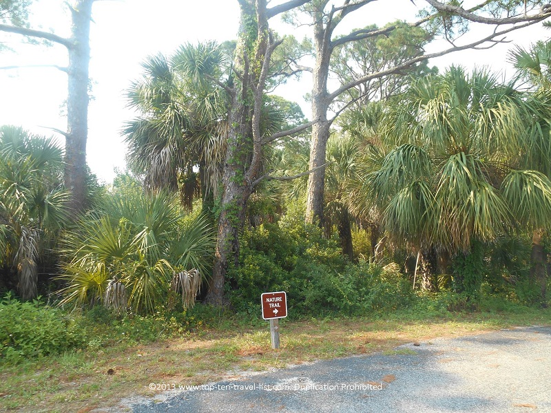 Osprey Trail - Honeymoon Island State Park - Dunedin, Florida
