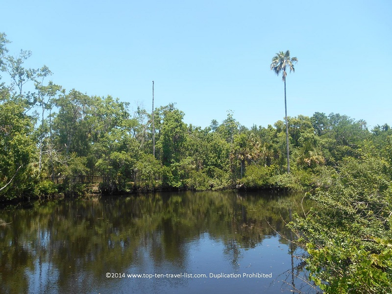 Pretty river views at James E. Grey Preserve in New Port Richey, Florida