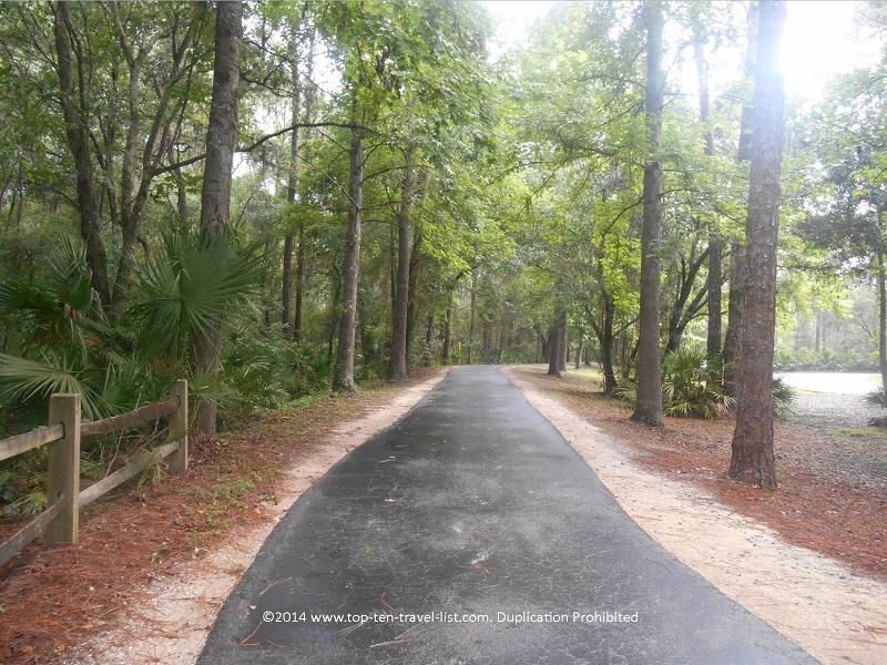Biking/jogging path at Tampa's Lettuce Lake Park