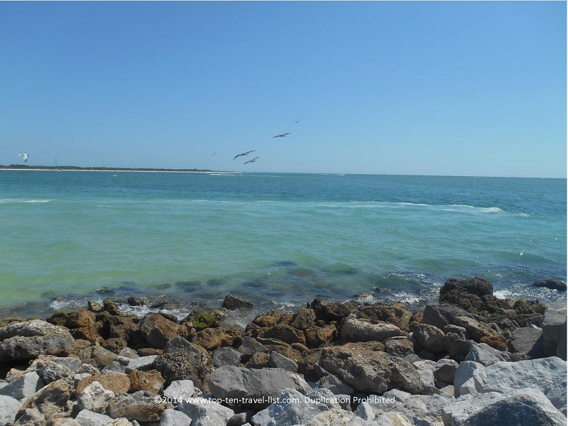 Birds flying over the water - Pass-A-Grille Beach in St. Petersburg, Florida