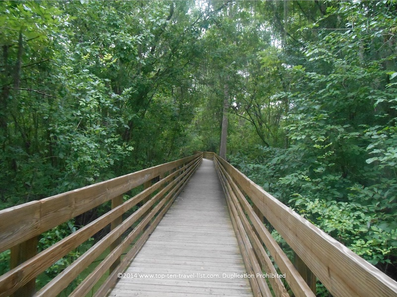 Shaded boardwalk at Tampa's Lettuce Lake Park