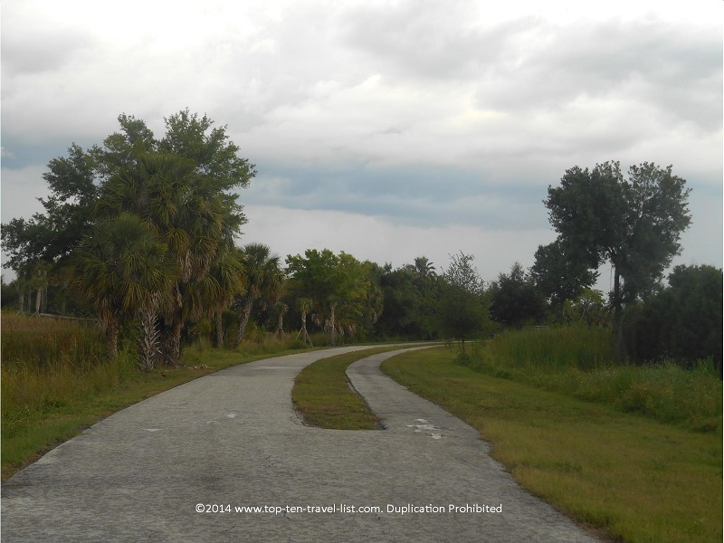 Tree lined views on the Tarpon Springs section of the Pinellas Trail