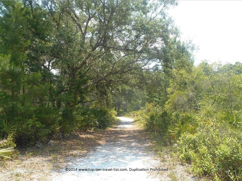 Shady trail views at Jay B. Starkey Wilderness Park - New Port Richey, FL